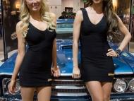2013-sema-models-056